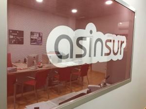 Logo Asinsur